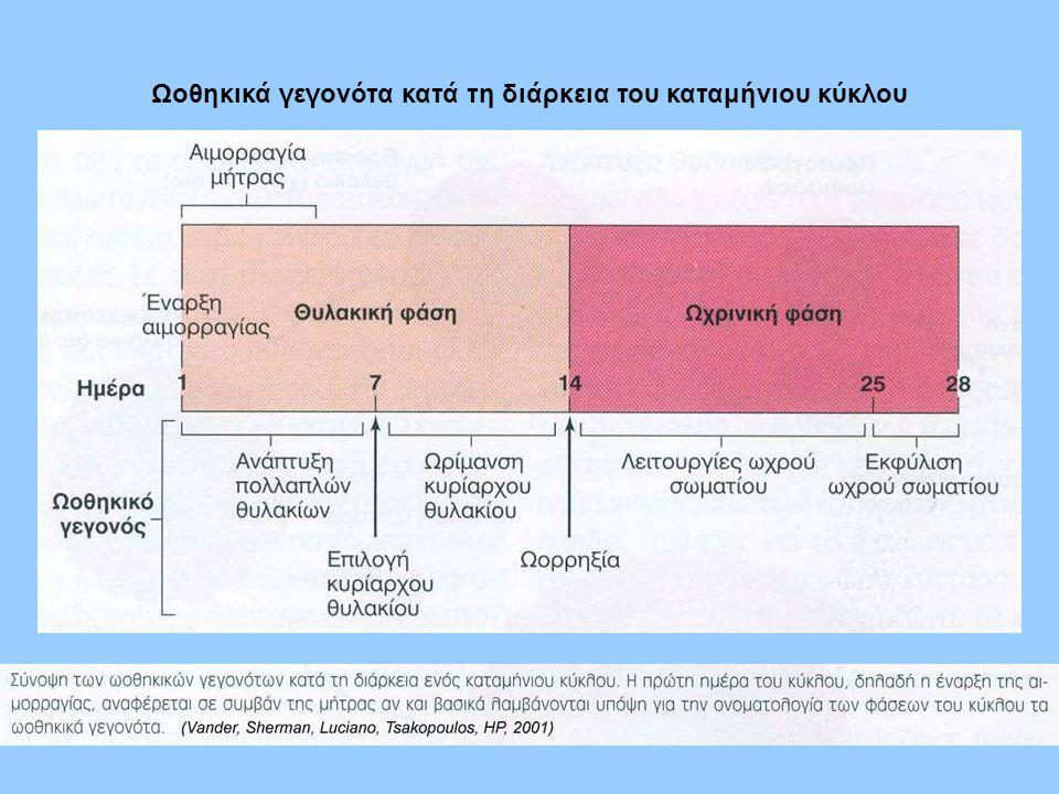Ωοθηκικά γεγονότα κατά τη διάρκεια του καταμήνιου κύκλου