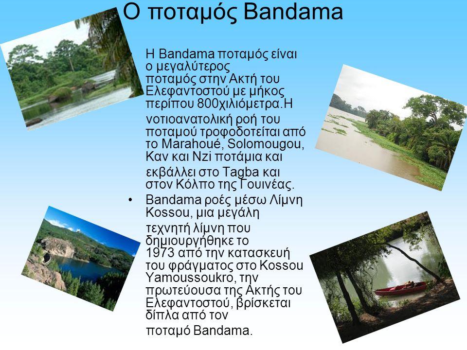 Ο ποταμός Bandama Η Bandama ποταμός είναι ο μεγαλύτερος ποταμός στην Ακτή του Ελεφαντοστού με μήκος περίπου 800χιλιόμετρα.Η