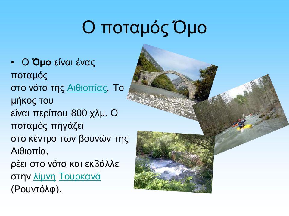 O ποταμός Όμο Ο Όμο είναι ένας ποταμός στο νότο της Αιθιοπίας. Το
