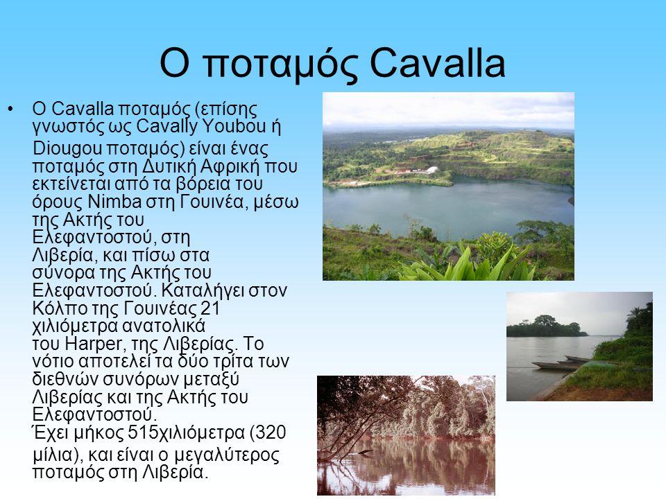 Ο ποταμός Cavalla Ο Cavalla ποταμός (επίσης γνωστός ως Cavally Youbou ή