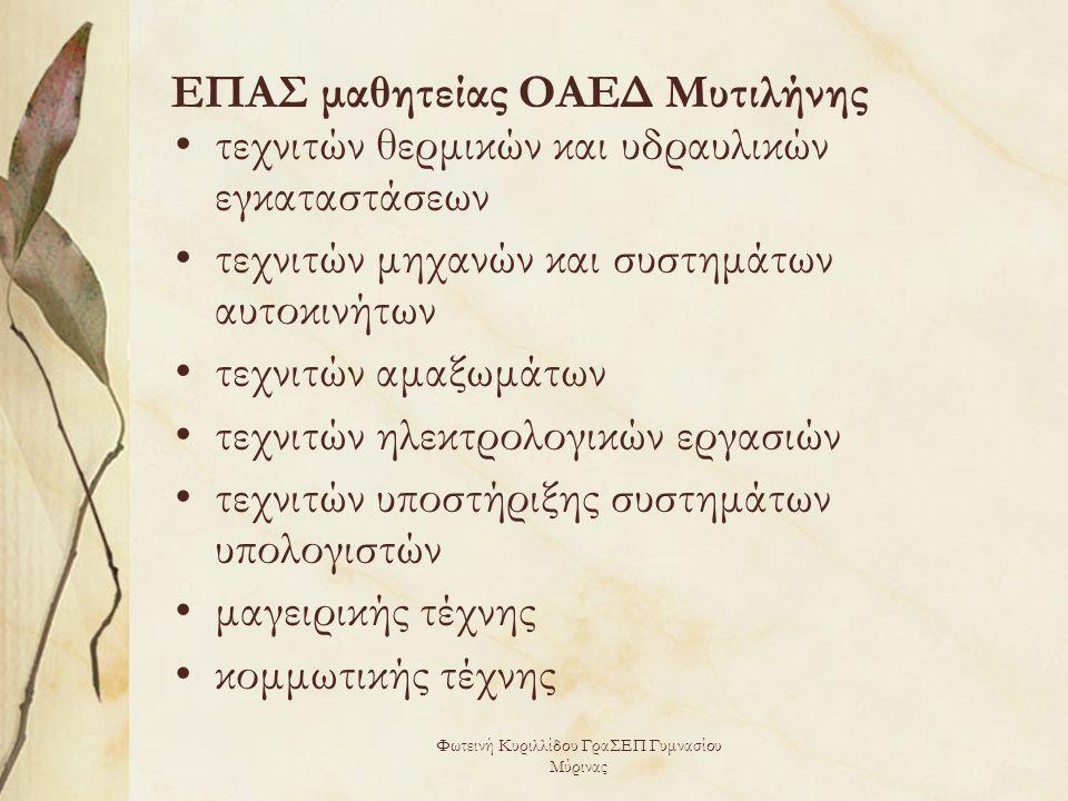 ΕΠΑΣ μαθητείας ΟΑΕΔ Μυτιλήνης