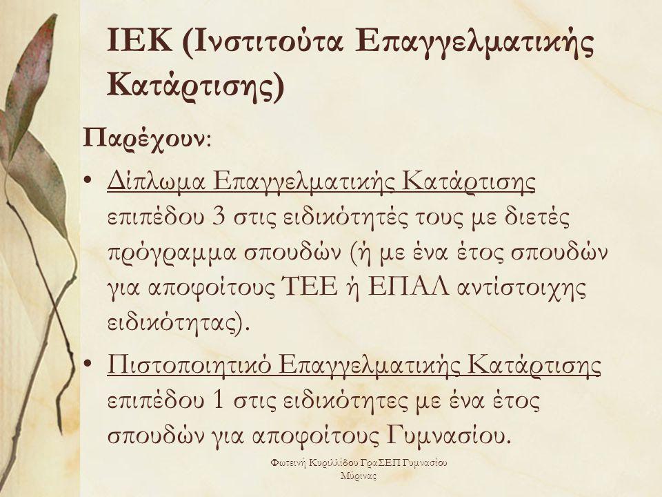 ΙΕΚ (Ινστιτούτα Επαγγελματικής Κατάρτισης)
