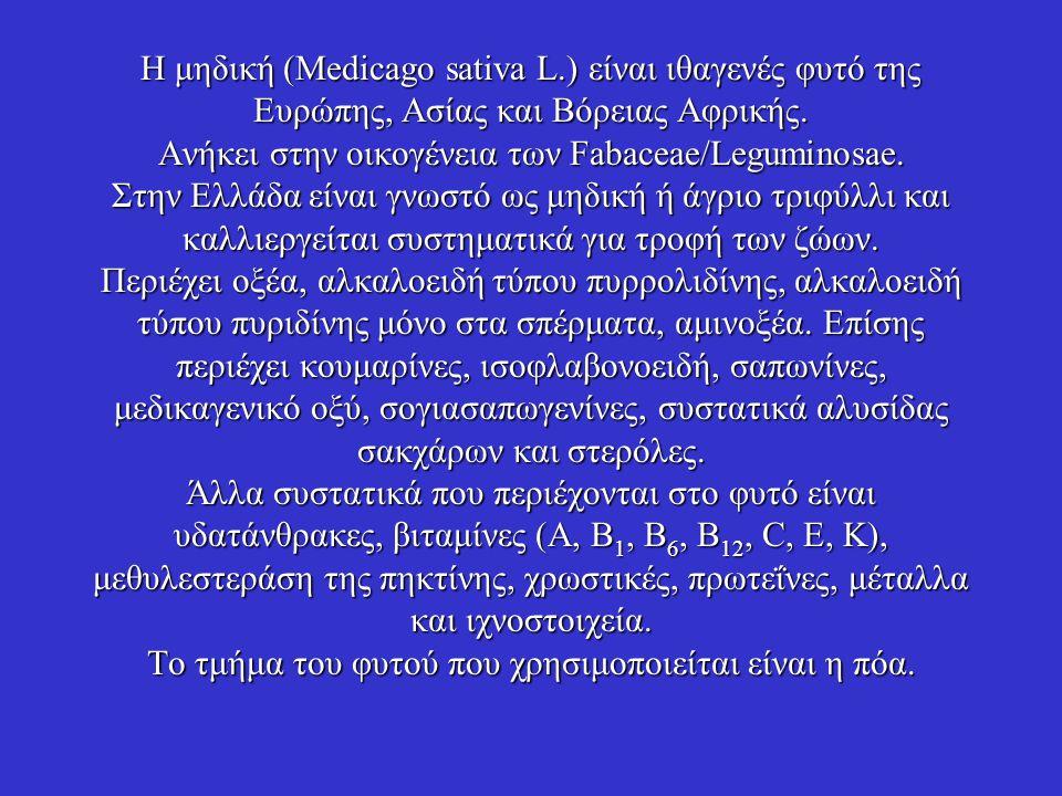 Η μηδική (Medicago sativa L