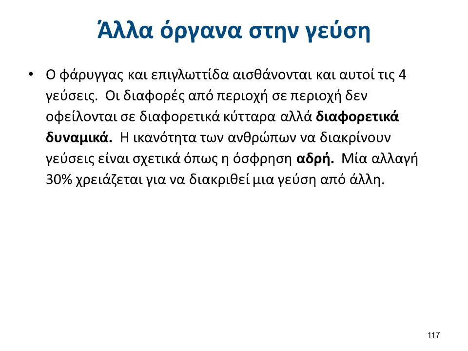 Μοριακά συμβάντα στις μεμβράνες των γευστικών υποδοχέων 1/2