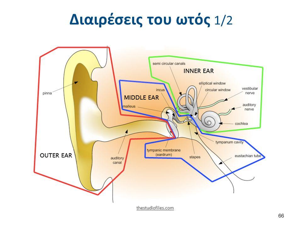 Διαιρέσεις του ωτός 2/2 1404 The Structures of the Ear , από CFCF διαθέσιμο με άδεια CC BY 3.0