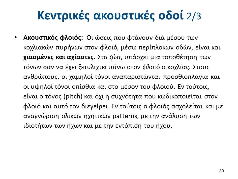 Κεντρικές ακουστικές οδοί 3/3