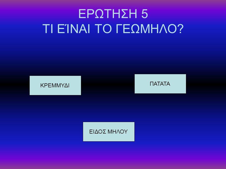 ΕΡΩΤΗΣΗ 5 ΤΙ ΕΊΝΑΙ ΤΟ ΓΕΩΜΗΛΟ