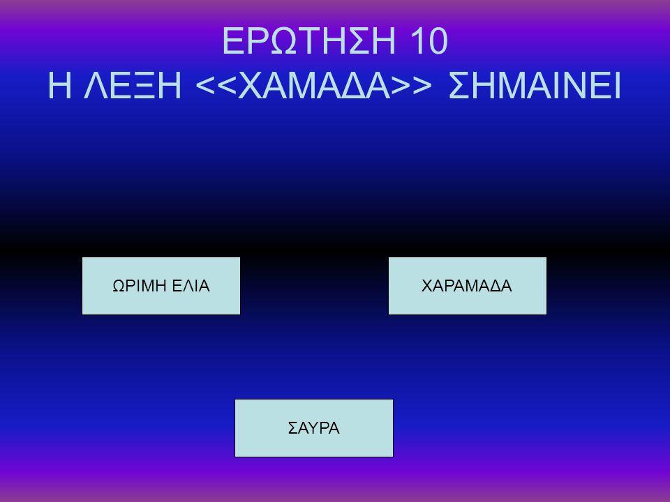 ΕΡΩΤΗΣΗ 10 Η ΛΕΞΗ <<ΧΑΜΑΔΑ>> ΣΗΜΑΙΝΕΙ