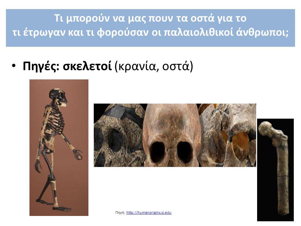 Πηγές: σκελετοί (κρανία, οστά)