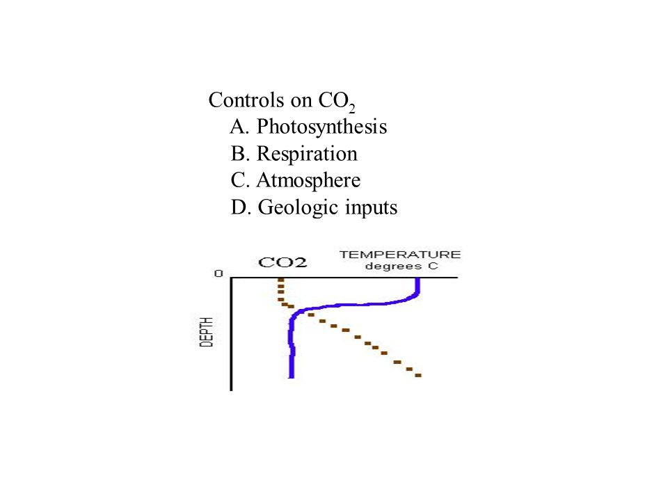 Controls on CO2 A. Photosynthesis B. Respiration C. Atmosphere D