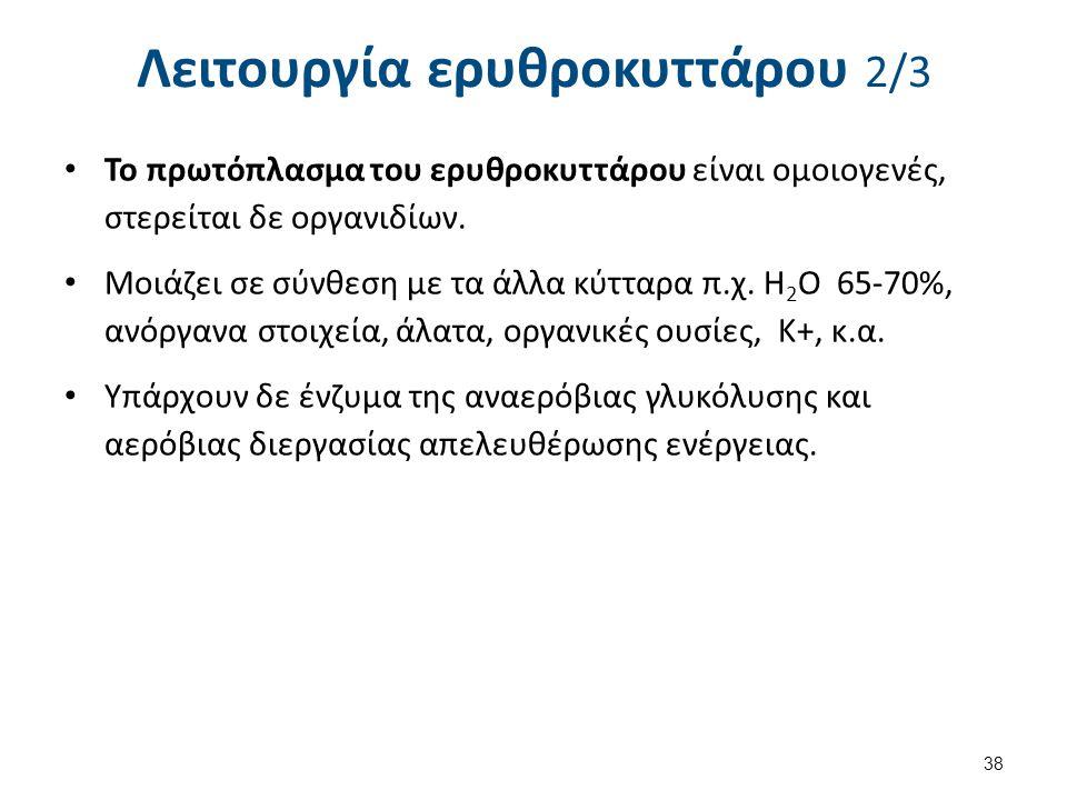 Λειτουργία ερυθροκυττάρου 3/3