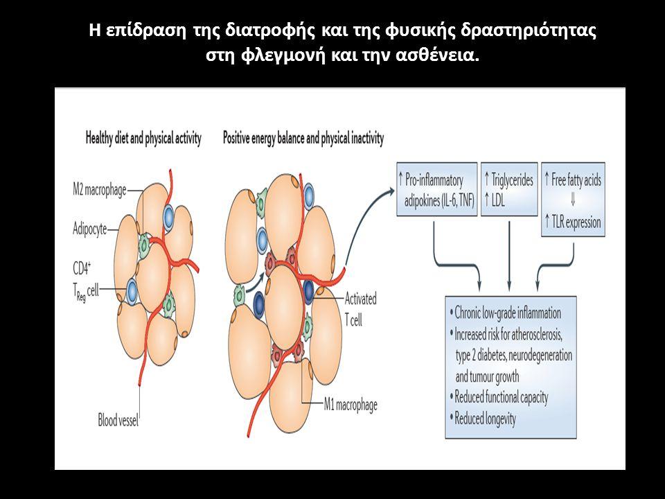 Η επίδραση της διατροφής και της φυσικής δραστηριότητας