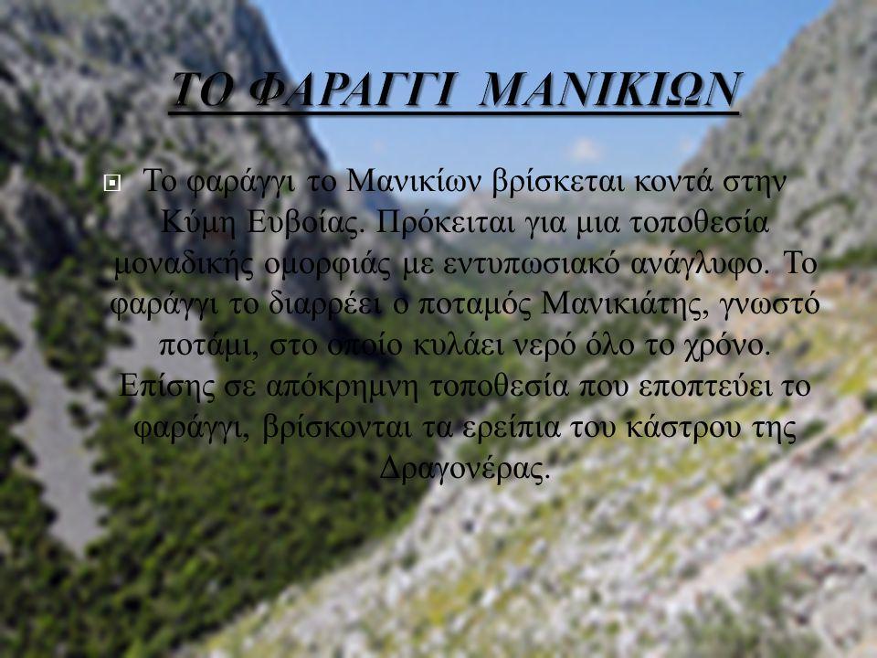 ΤΟ ΦΑΡΑΓΓΙ ΜΑΝΙΚΙΩΝ