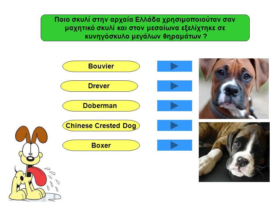Ποιο σκυλί στην αρχαία Ελλάδα χρησιμοποιούταν σαν