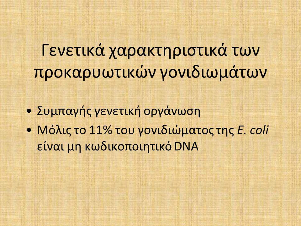 Γενετικά χαρακτηριστικά των προκαρυωτικών γονιδιωμάτων