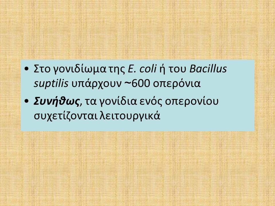 Στο γονιδίωμα της E. coli ή του Bacillus suptilis υπάρχουν ~600 οπερόνια
