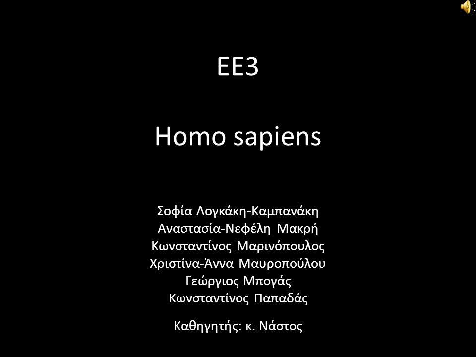 ΕΕ3 Homo sapiens Σοφία Λογκάκη-Καμπανάκη Αναστασία-Νεφέλη Μακρή