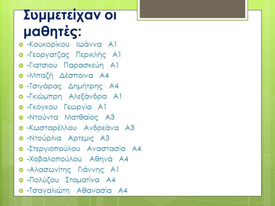 Συμμετείχαν οι μαθητές: