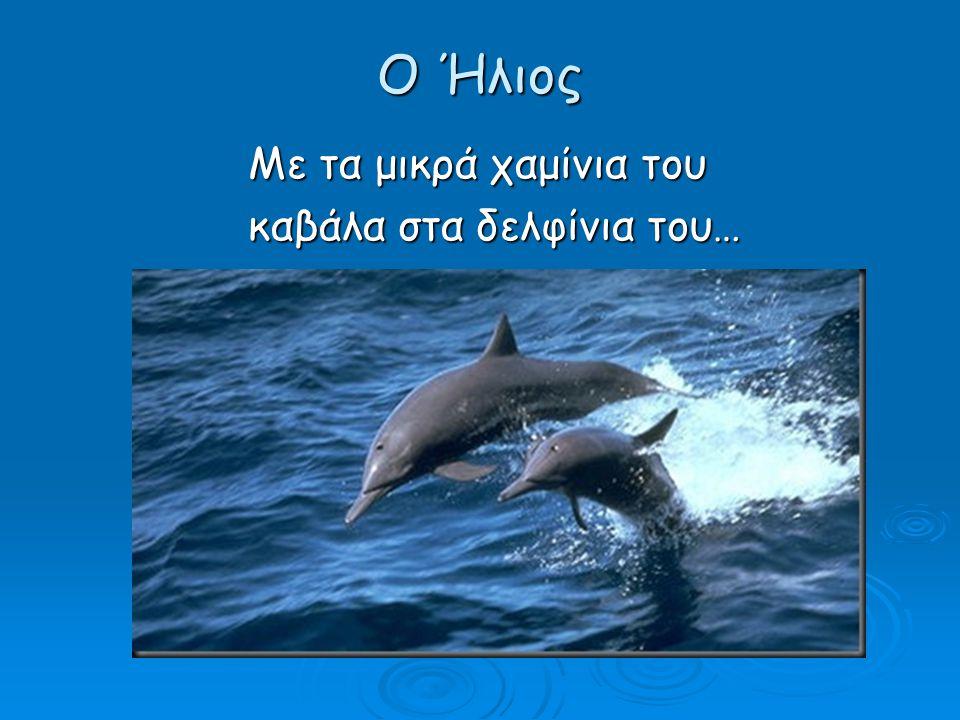 Ο Ήλιος Με τα μικρά χαμίνια του καβάλα στα δελφίνια του…