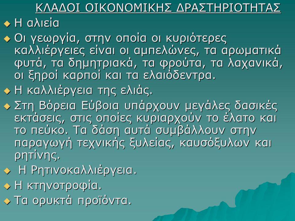 ΚΛΑΔΟΙ ΟΙΚΟΝΟΜΙΚΗΣ ΔΡΑΣΤΗΡΙΟΤΗΤΑΣ