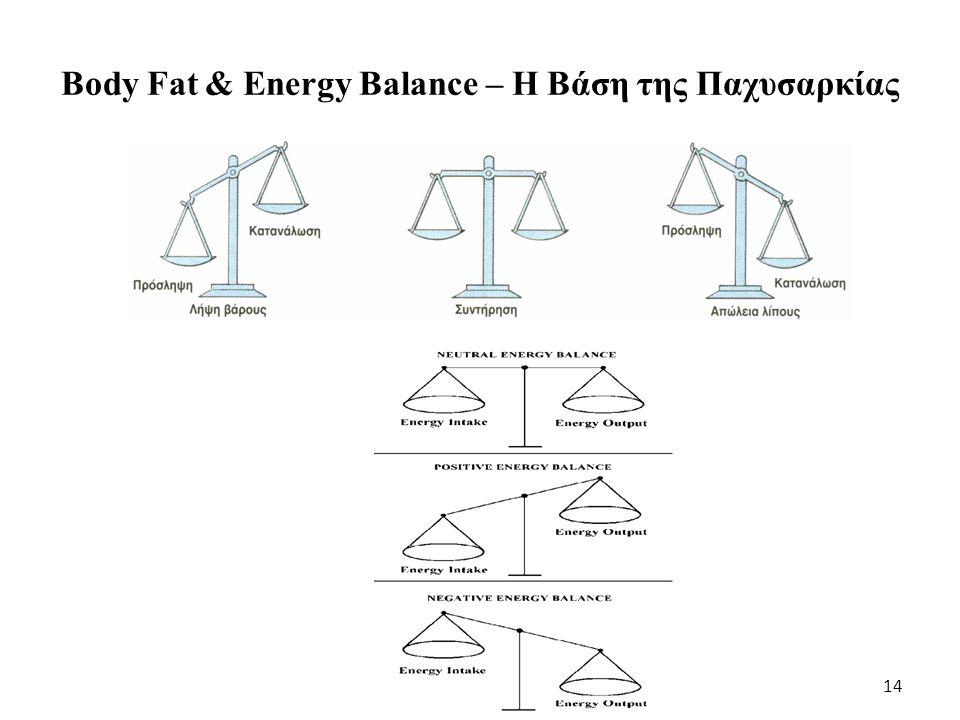 Body Fat & Energy Balance – Η Βάση της Παχυσαρκίας