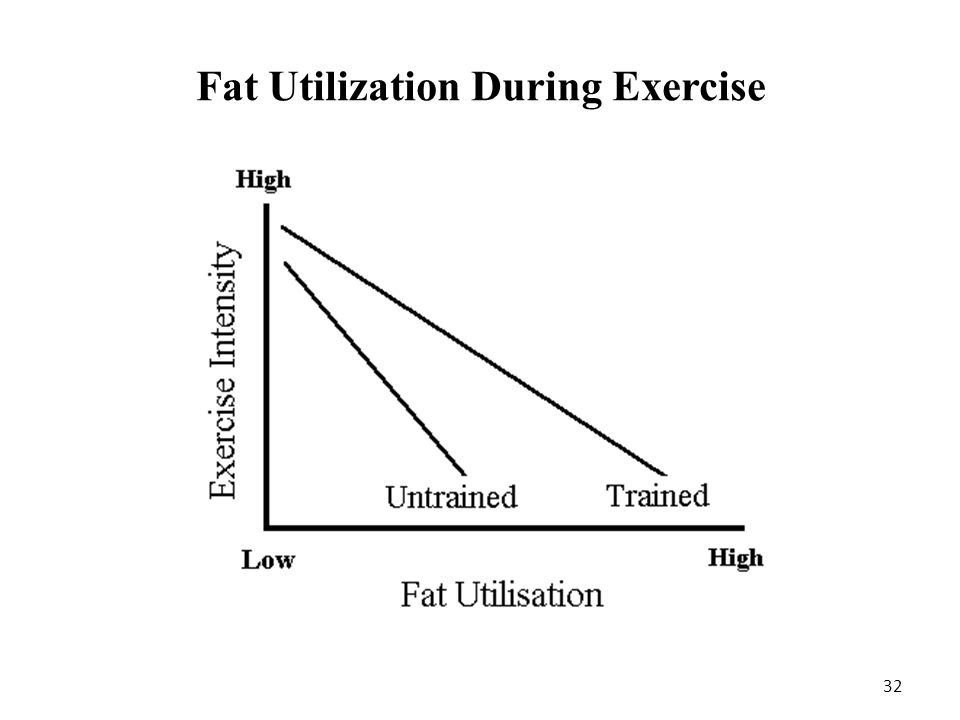Fat Utilization During Exercise