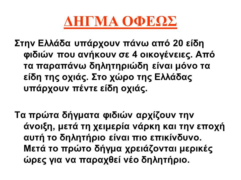 ΔΗΓΜΑ ΟΦΕΩΣ