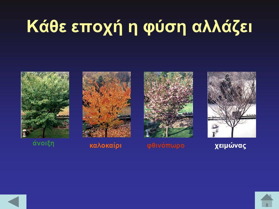 Κάθε εποχή η φύση αλλάζει