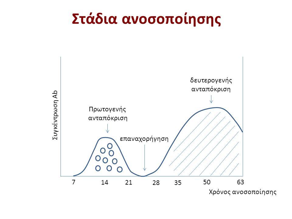 Παραγωγή αντισωμάτων μετά την ανοσοποίηση (1 από 2)