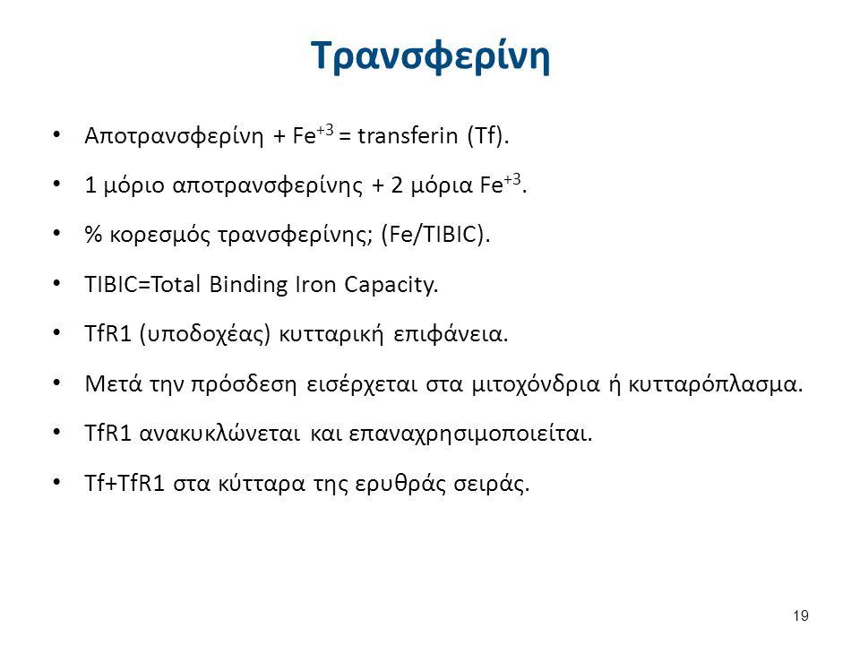 Ομοιόσταση Fe - Ρυθμιστικός Ρόλος Εφεψίνης