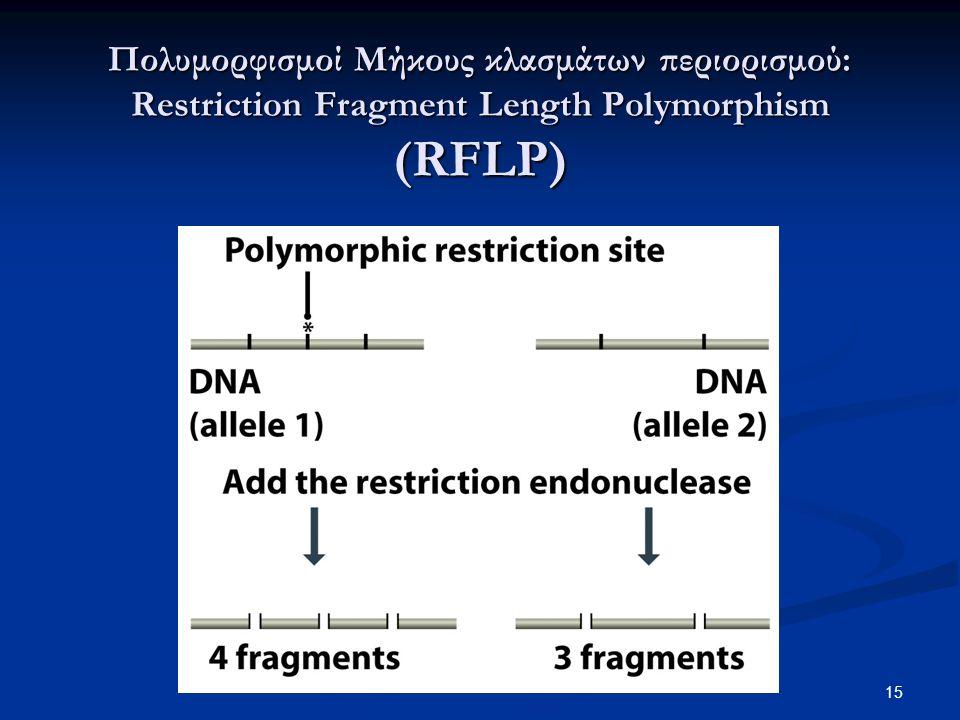 Πολυμορφισμοί Μήκους κλασμάτων περιορισμού: Restriction Fragment Length Polymorphism (RFLP)