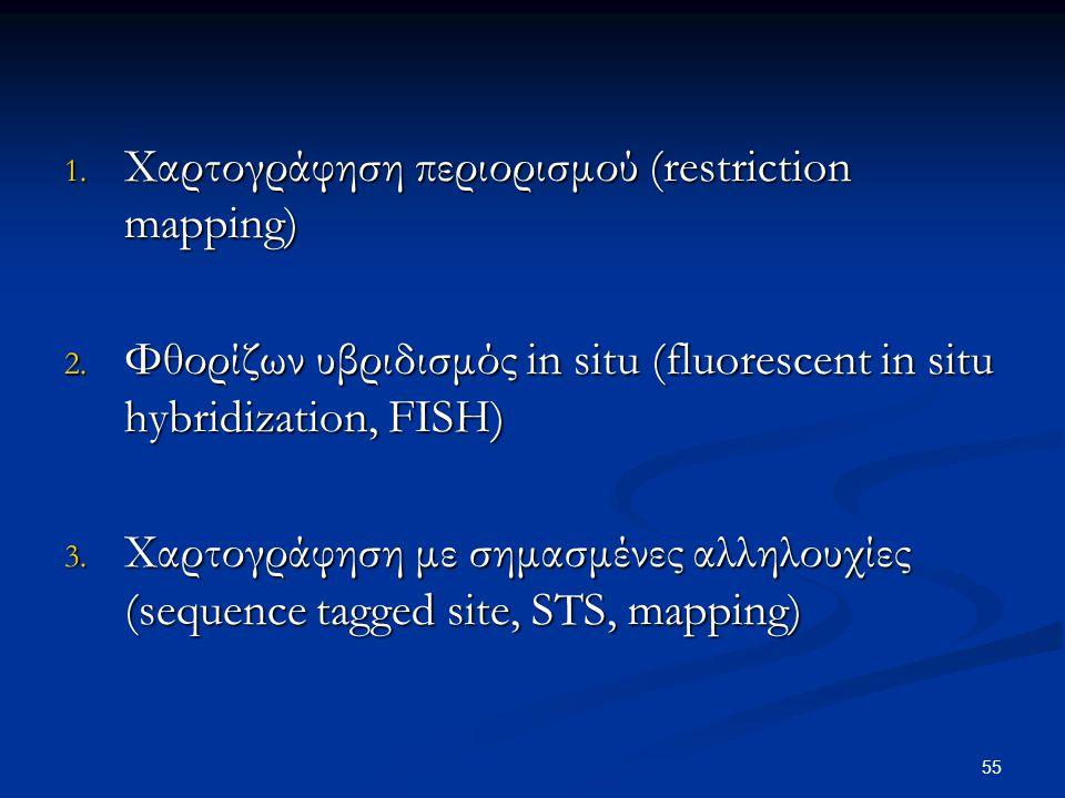 Χαρτογράφηση περιορισμού (restriction mapping)
