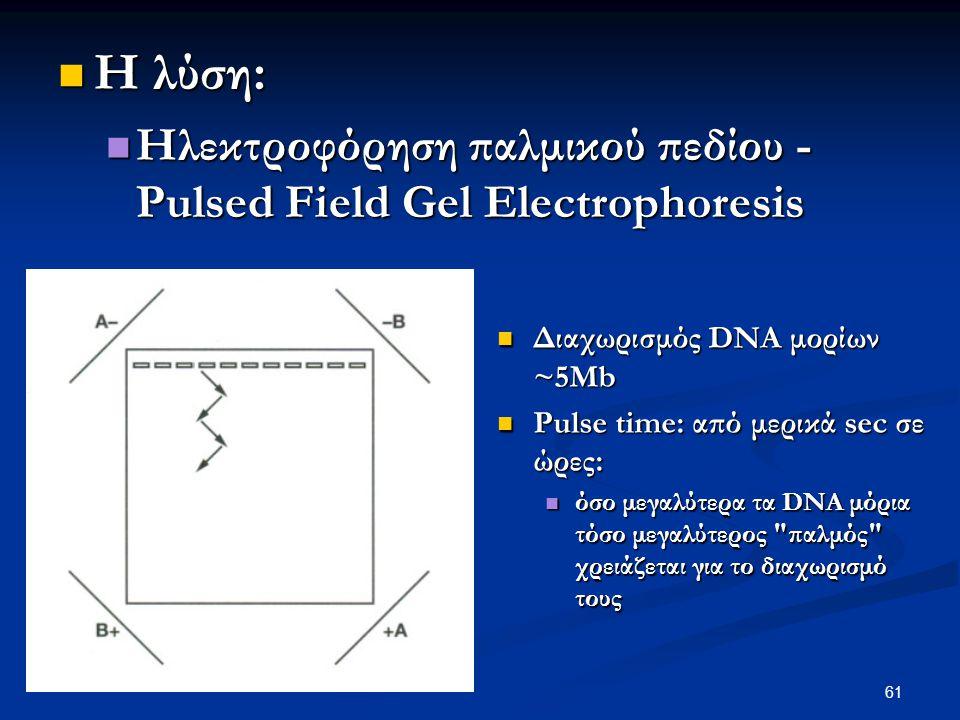 Η λύση: Ηλεκτροφόρηση παλμικού πεδίου - Pulsed Field Gel Electrophoresis. Διαχωρισμός DNA μορίων ~5Mb.