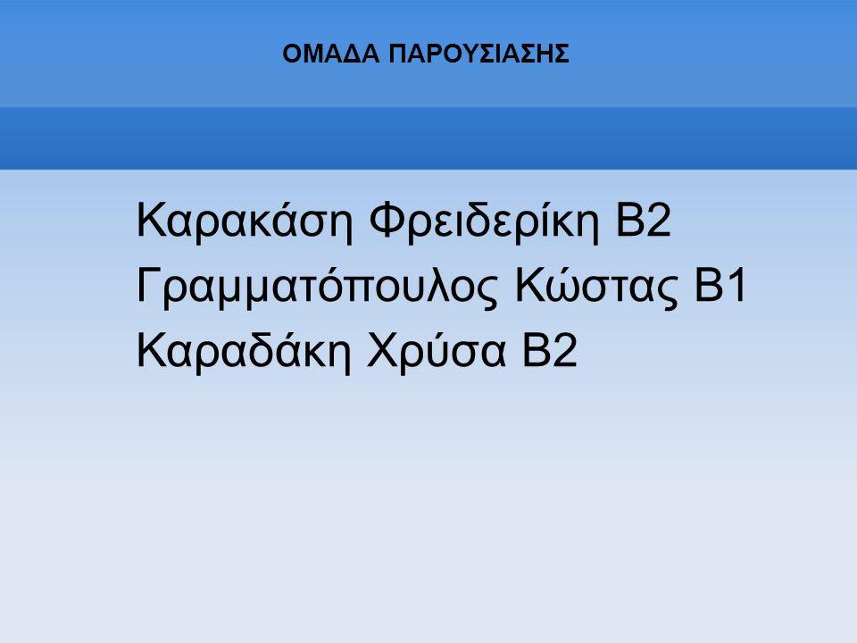 Γραμματόπουλος Κώστας Β1 Καραδάκη Χρύσα Β2