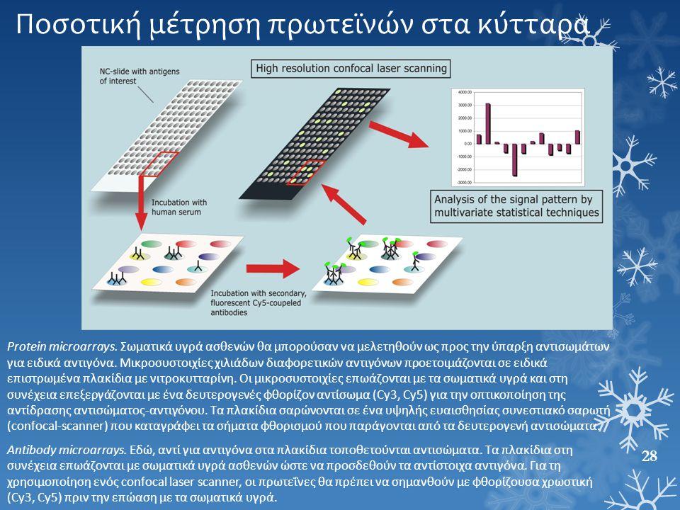 Ποσοτική μέτρηση πρωτεϊνών στα κύτταρα