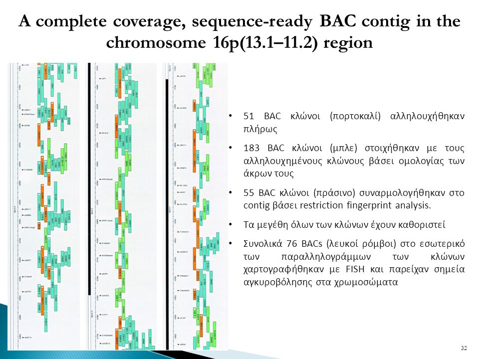 A complete coverage, sequence-ready BAC contig in the chromosome 16p(13.1–11.2) region