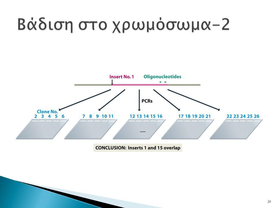 Βάδιση στο χρωμόσωμα-2