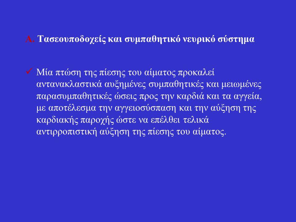 Α. Τασεουποδοχείς και συμπαθητικό νευρικό σύστημα