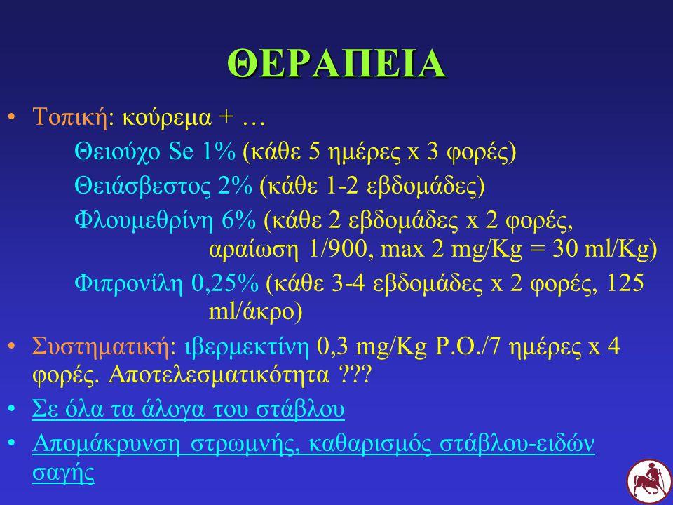 ΘΕΡΑΠΕΙΑ Τοπική: κούρεμα + … Θειούχο Se 1% (κάθε 5 ημέρες x 3 φορές)