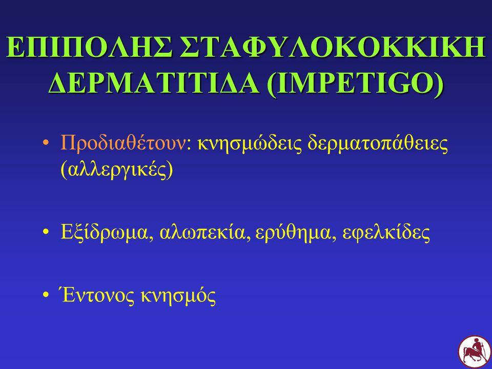 ΕΠΙΠΟΛΗΣ ΣΤΑΦΥΛΟΚΟΚΚΙΚΗ ΔΕΡΜΑΤΙΤΙΔΑ (IMPETIGO)