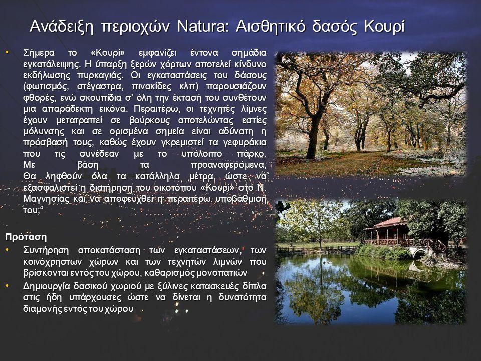 Ανάδειξη περιοχών Natura: Αισθητικό δασός Κουρί
