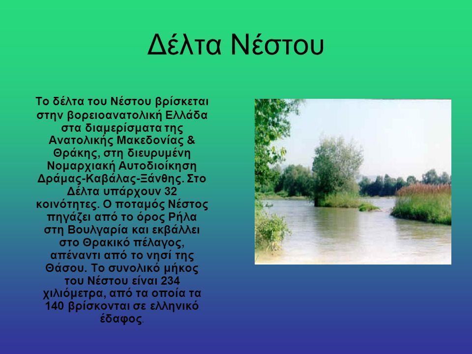 Δέλτα Νέστου