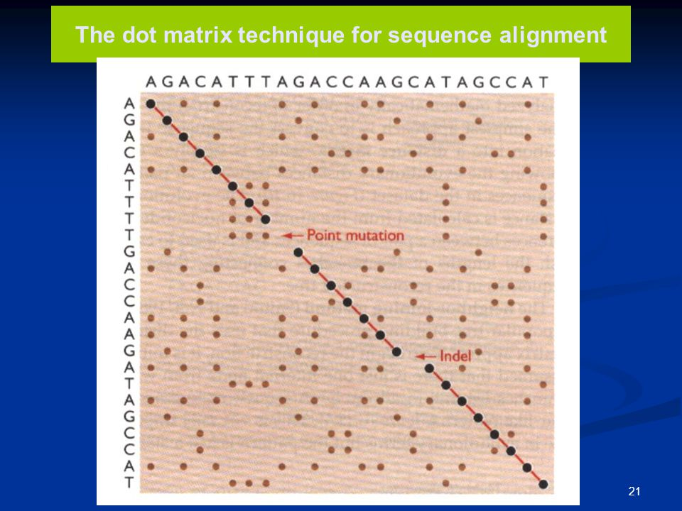 The dot matrix technique for sequence alignment