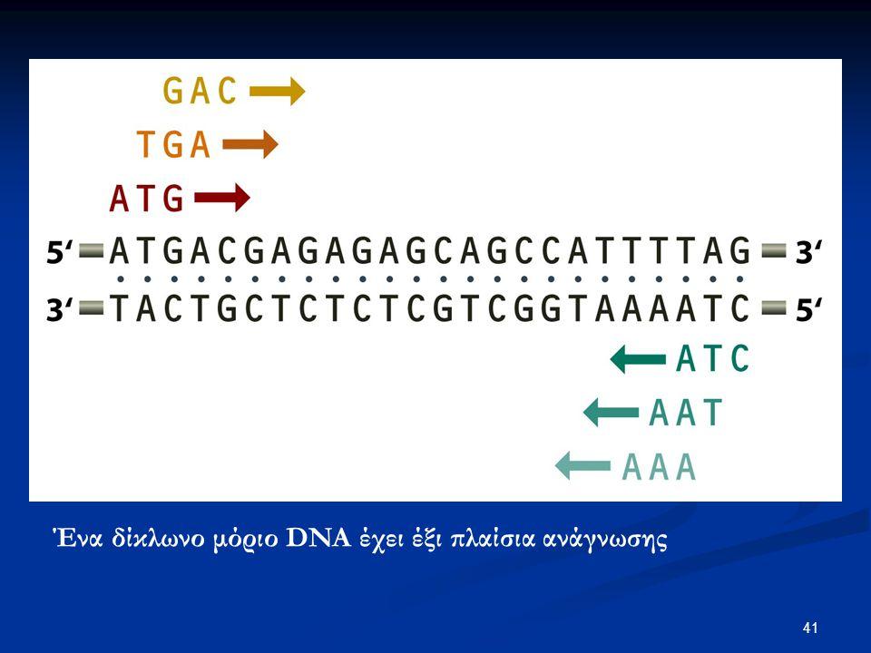 Ένα δίκλωνο μόριο DNA έχει έξι πλαίσια ανάγνωσης
