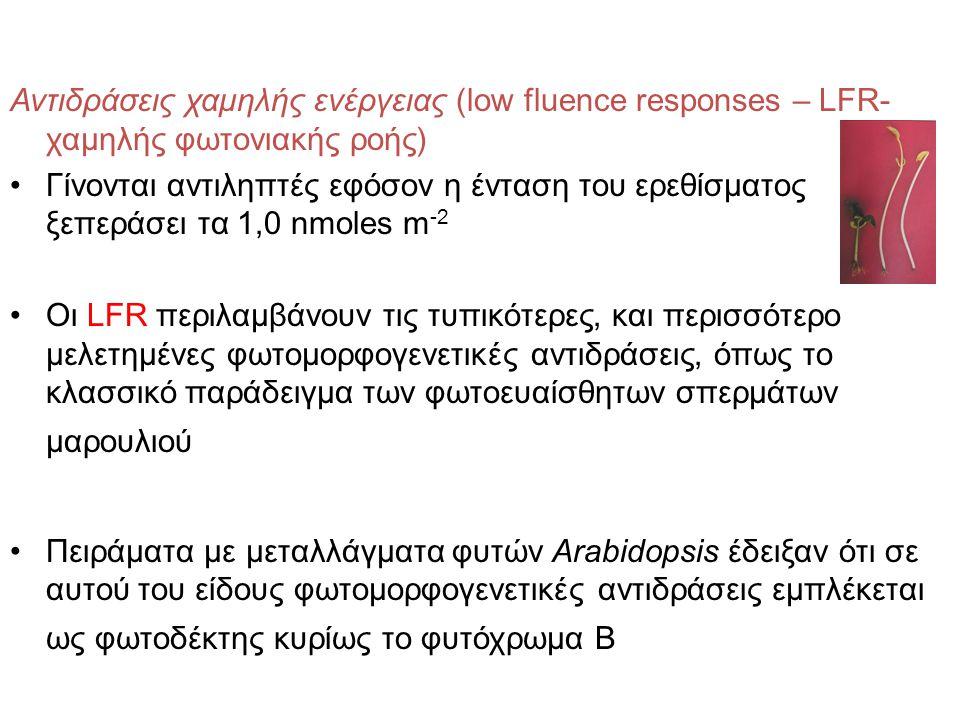 Αντιδράσεις χαμηλής ενέργειας (low fluence responses – LFR-χαμηλής φωτονιακής ροής)