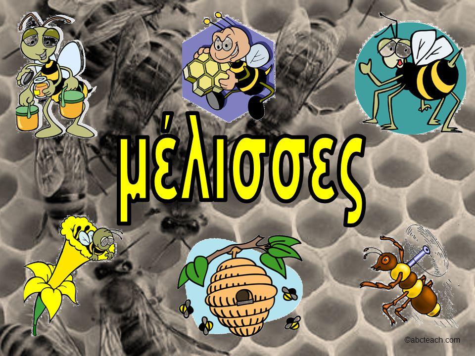 μέλισσες ©abcteach.com