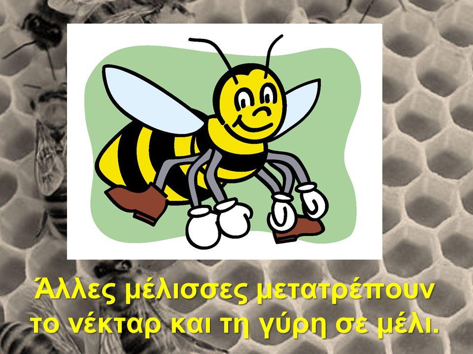 Άλλες μέλισσες μετατρέπουν το νέκταρ και τη γύρη σε μέλι.