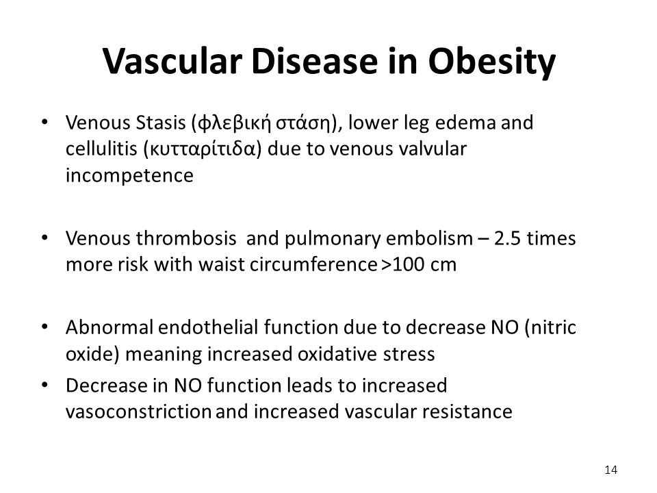 Vascular Disease in Obesity