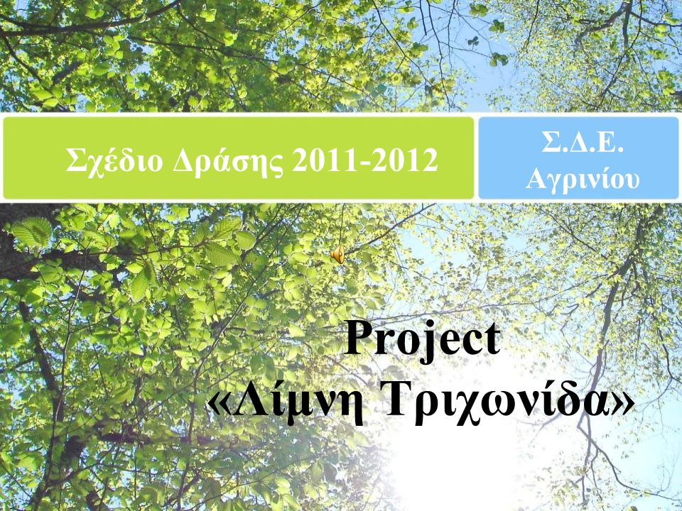 Project «Λίμνη Τριχωνίδα»