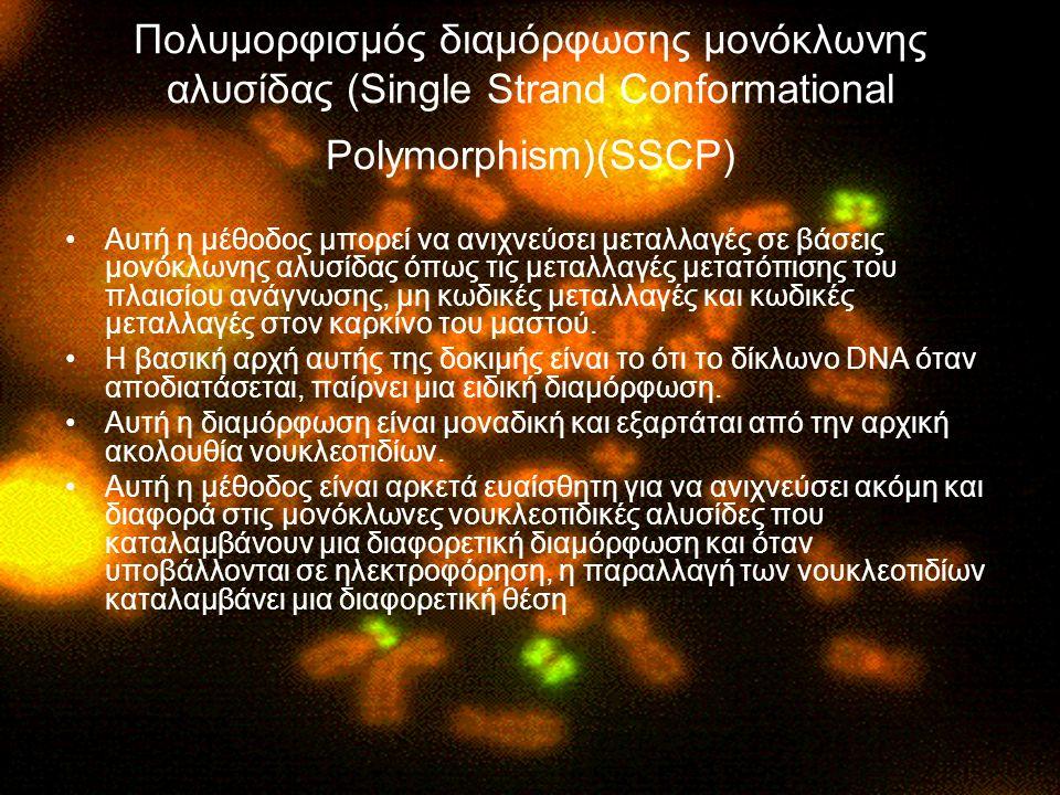 Πολυμορφισμός διαμόρφωσης μονόκλωνης αλυσίδας (Single Strand Conformational Polymorphism)(SSCP)
